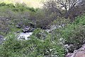 Amberd river 01.jpg