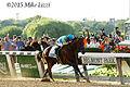 American Pharoah - 2015 Belmont Stakes (18081280603).jpg