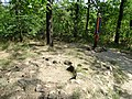 Ancient Stone Circle - Khortytsa Island - Zaporozhye - Ukraine (43375363004).jpg