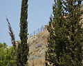 Ancient church on mont of Beatitudes of 4 century atcheological site.jpg