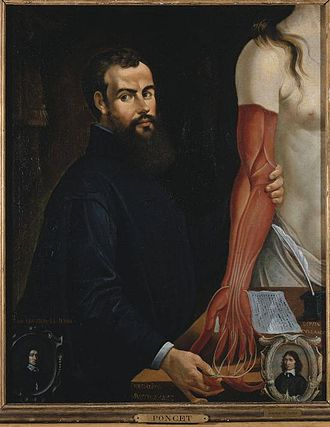 Comparative anatomy - A posthumous painting of Andreas Vesalius