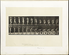 Animal locomotion. Plate 235 (Boston Public Library).jpg