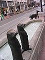 Animals in Pools (476011911).jpg