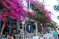 Antiparos-traditional-cafes.jpg