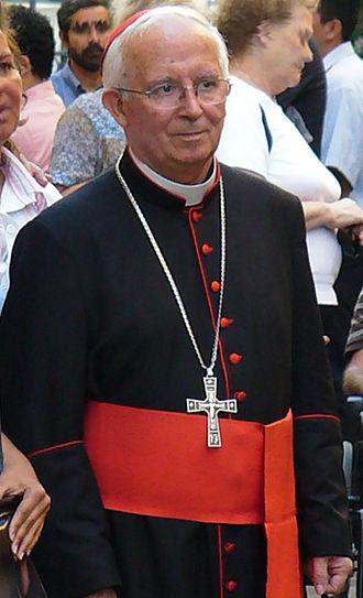 Antonio Cañizares Llovera - Image: Antoniocanizares 2