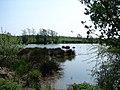 Applegarthtown Wildlife Sanctuary - geograph.org.uk - 800296.jpg