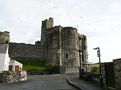 Approach to Kidwelly Castle - geograph.org.uk - 1155131.jpg
