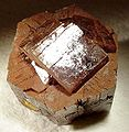 Aragonite-4jb15-lc21b.jpg