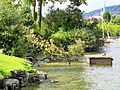 Arboretum - General-Guisan-Quai 2012-07-03 18-02-18 (P7000).JPG