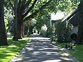 Arboretum Gaston Allard 2.JPG
