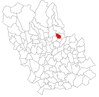 Ariceștii Zeletin Commune in Prahova, Romania
