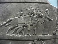 Assyrian royal lion Hunt20.JPG