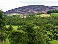 Aultonrea, Glen Muick - geograph.org.uk - 876570.jpg