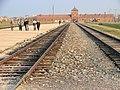 Auschwitz II-Birkenau - Death Camp - Rail Lines Leading to Death Gate at Sunset - Oswiecim - Poland - 03.jpg
