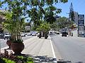 Avenida Rui Barbosa, Heliópolis - Garanhuns - Pernambuco - Brasil(2).jpg