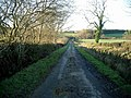 Ayrshire country road - geograph.org.uk - 308467.jpg
