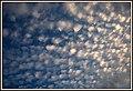 Az égi legelő. - panoramio.jpg