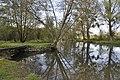 Bèze river in Mirebeau-sur-Bèze rue Pépin 2.JPG