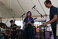 BRAIDS at Hillside Festival 2015.jpg