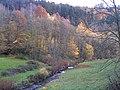 Baden Sightseeing-Tour, Albtal bei Frauenalb, Schwarzwald, black forest, forêt noire - panoramio.jpg