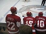 Badger Hockey at MTU (2267644033).jpg