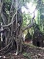 Bakreswar Temples and Hot spring 22.jpg