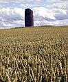 Balgone Windmill - geograph.org.uk - 1415853.jpg