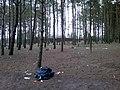 Baltiyskiy rayon, Konigsberg, Kaliningradskaya oblast', Russia - panoramio (40).jpg