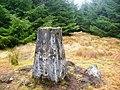 Balunton Hill trig pillar - geograph.org.uk - 1218155.jpg