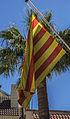 Bandera de Castelló de la Ribera (País Valencià).jpg