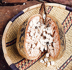 A baobab fruit split open to show the seeds. T...