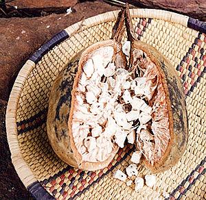 Burkinabé cuisine - Image: Baobab seeds