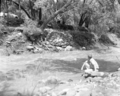 Basket s & mc rock revetment, Virgin River in a moderate flood condition. ; ZION Museum and Archives Image ZION 8371 ; ZION 8371 (72077ad1d9554a828685295ac117288f).tif