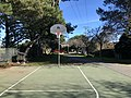 Basketball Hoop in Marin County.jpg