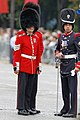 Bastille Day 2014 Paris - Color guards 003.jpg