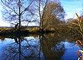 Beaver - panoramio (1).jpg