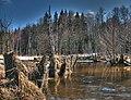 Beaver creek - panoramio.jpg