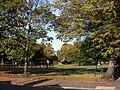 Beech Road Park - geograph.org.uk - 1565247.jpg