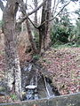 Beecher Creek Kensington Park.JPG