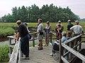 Before Carson Trail boardwalk restoration - smaller platform (15872693897).jpg