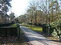 Begraafplaats Albertlaan Sterksel.JPG