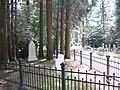 Begraafplaats Soerenseweg (31077435656).jpg