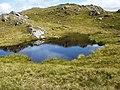 Beinn Dronaig lochan - geograph.org.uk - 1420209.jpg