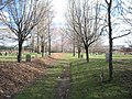 Bennington Street Burying Ground (1).jpg