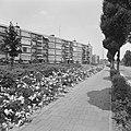 Beplantingen, flats, Bestanddeelnr 167-1001.jpg