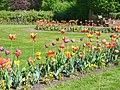 Berlin - Gaerten der Welt - Fruehling (Gardens of the World - Springtime) - geo.hlipp.de - 36588.jpg