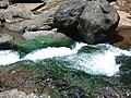 Bhima river.jpg
