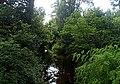 Biestrzykówka - panoramio (3).jpg