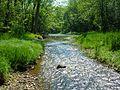 Big Darby Creek.jpg