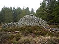 Bigges' Pillar, Edlingham Woods - geograph.org.uk - 1140110.jpg